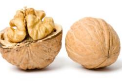 Польза грецких орехов при лечении аденомы